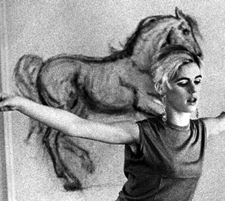 Edie Sedgwick Drawings: charcoal drawing of a horse pinned to my apartment wall in New York.